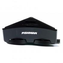 Fishman GT-2